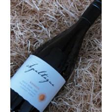 Apaltagua Reserva Pinot Noir 2010