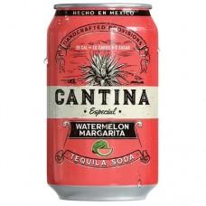 Cantina Especial Watermelon Margarita 4 Pack