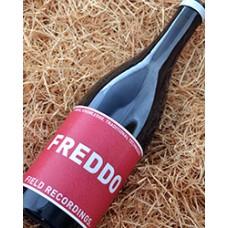 Field Recordings Freddo 2018
