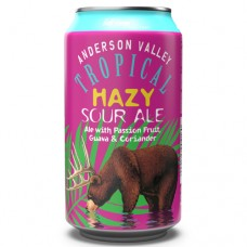 Anderson Valley Tropical Hazy Sour Ale 6 Pack