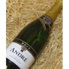Andre Brut California Champagne