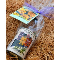Mother's Day Wine Flower Pail